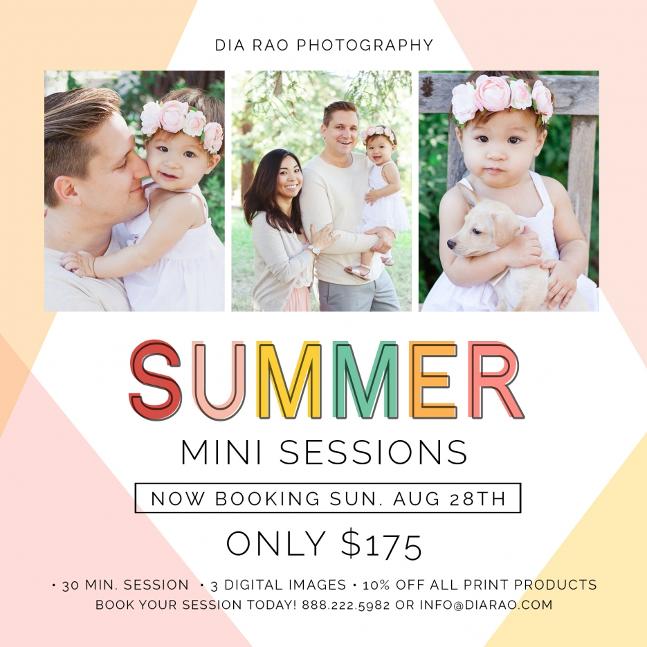 Marin Family Photographer Summer Mini Sessions